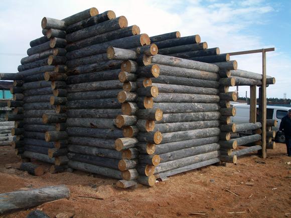 Как выбрать сруб для строительства деревянного дома. Окончание