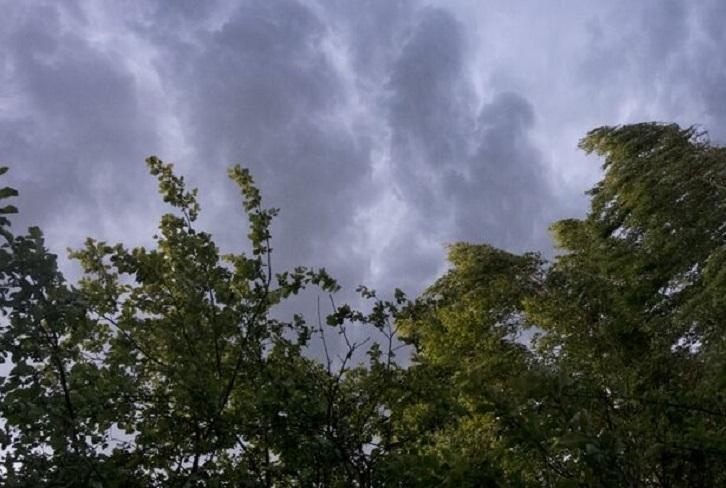 Ветер до 18 метров в секунду ожидается в Иркутской области днем 21 мая