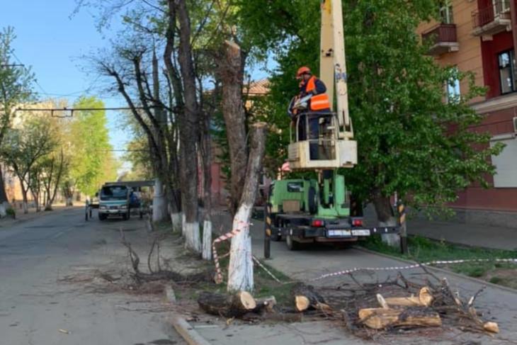 Многолетние деревья срубили на улице Пролетарской в Иркутске