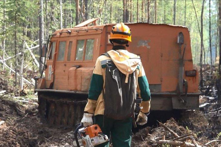 Тысяча гектаров леса горит в Иркутской области