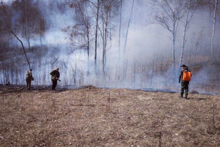 Девять тысяч гектаров горит в Иркутской области утром 12 мая