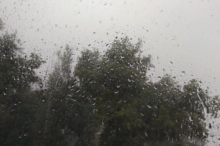 Грозы и сильный ветер ожидаются в Иркутской области в выходные