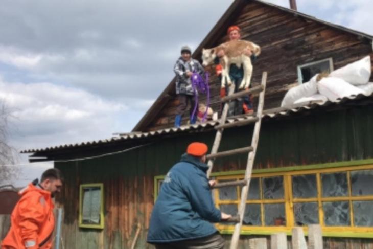 Вода ушла из всех подтопленных домов в селе Преображенка Катангского района