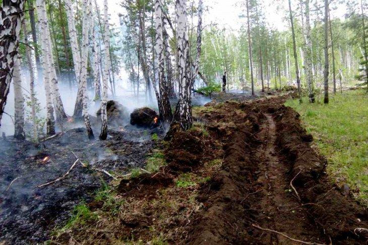 Пять тысяч гектаров горит в Иркутской области утром 11 мая