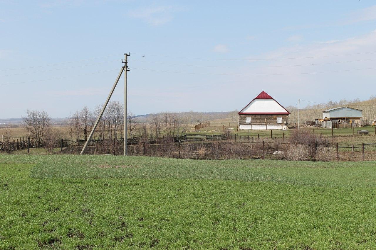 В Башкирии глава сельсовета незаконно выделила знакомым земельный участок