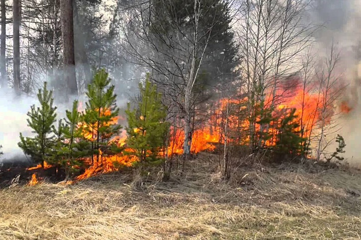Семь гектаров горит в Прибайкальском нацпарке