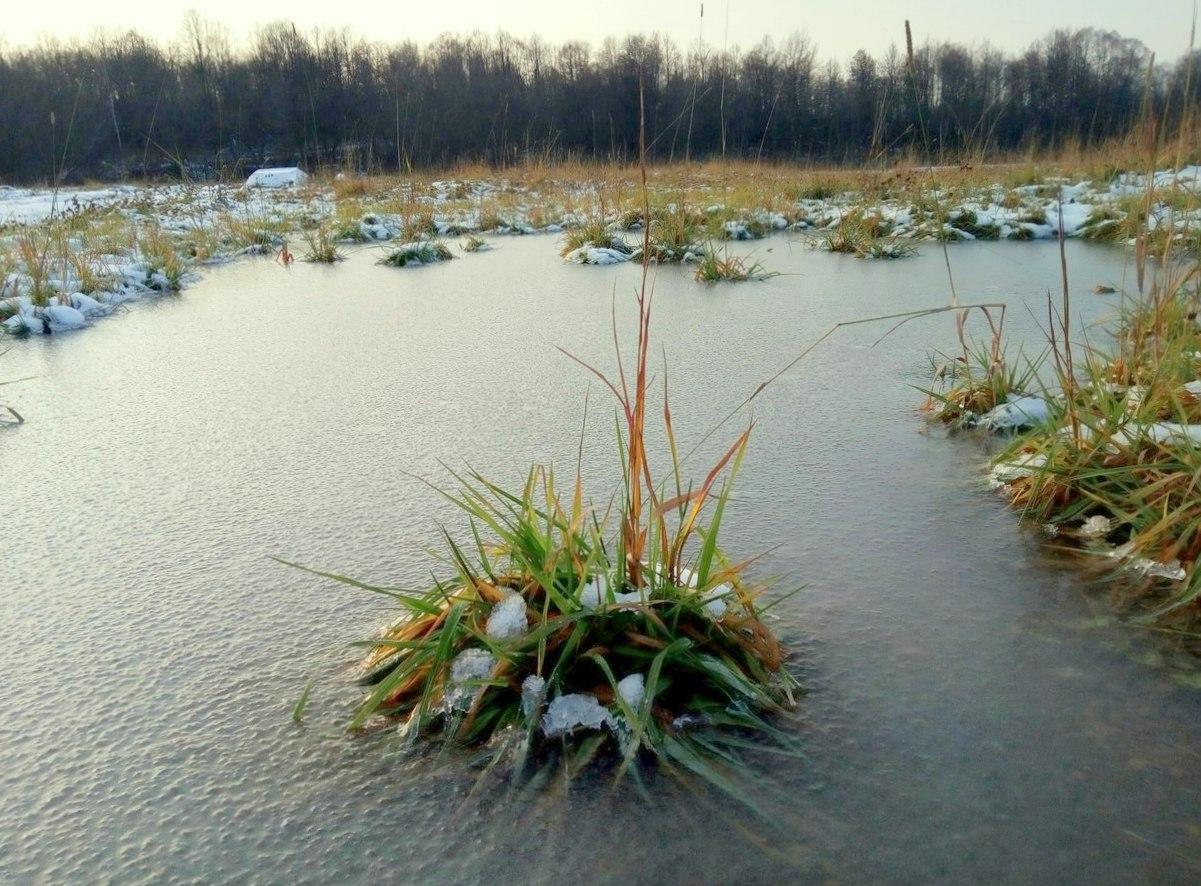 В Башкирии ожидаются заморозки