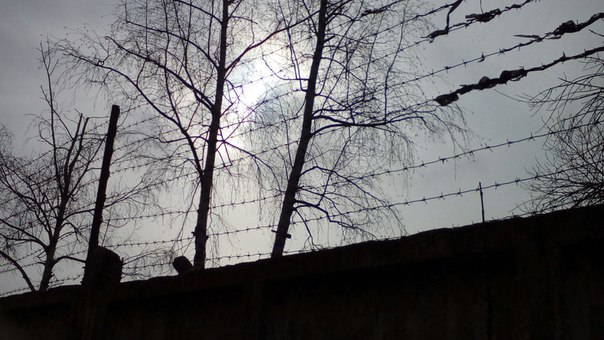 В Башкирии сотрудники УФСИН нашли сбежавшего осужденного