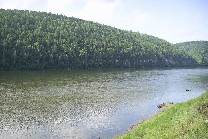Роспотребнадзор назвал непригодной для купания реку Белая в Усольском районе