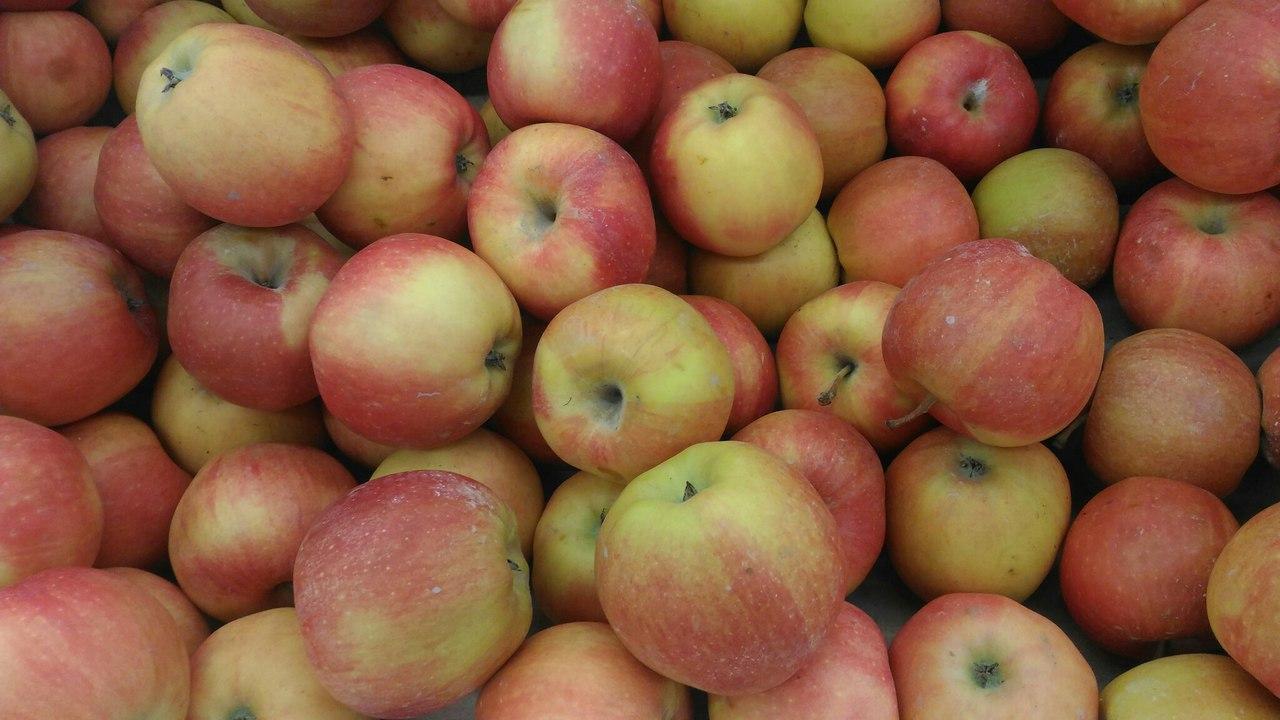 В Уфе подскочили цены на яблоки