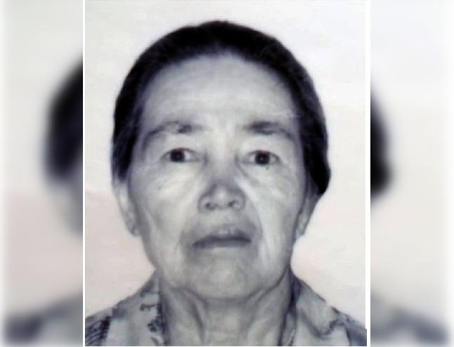 В Башкирии пропала 83-летняя пенсионерка