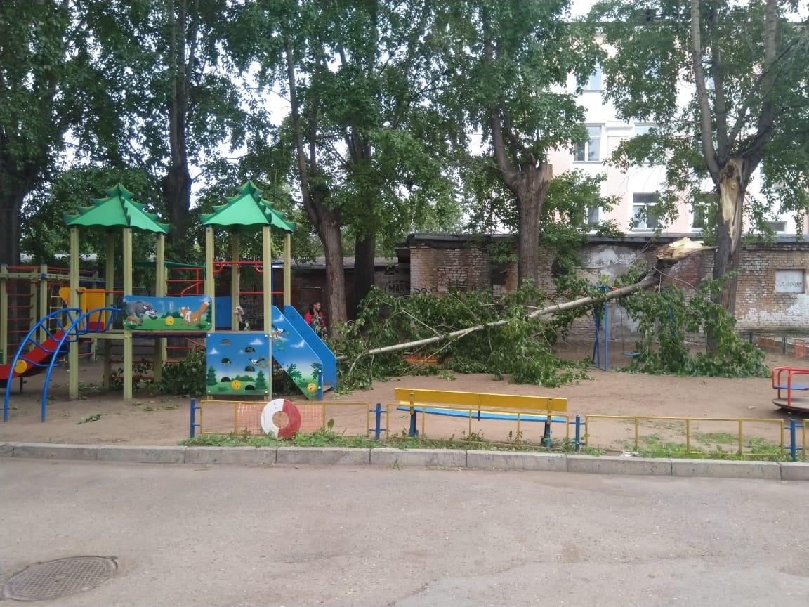 В Уфе на детской площадке упало дерево