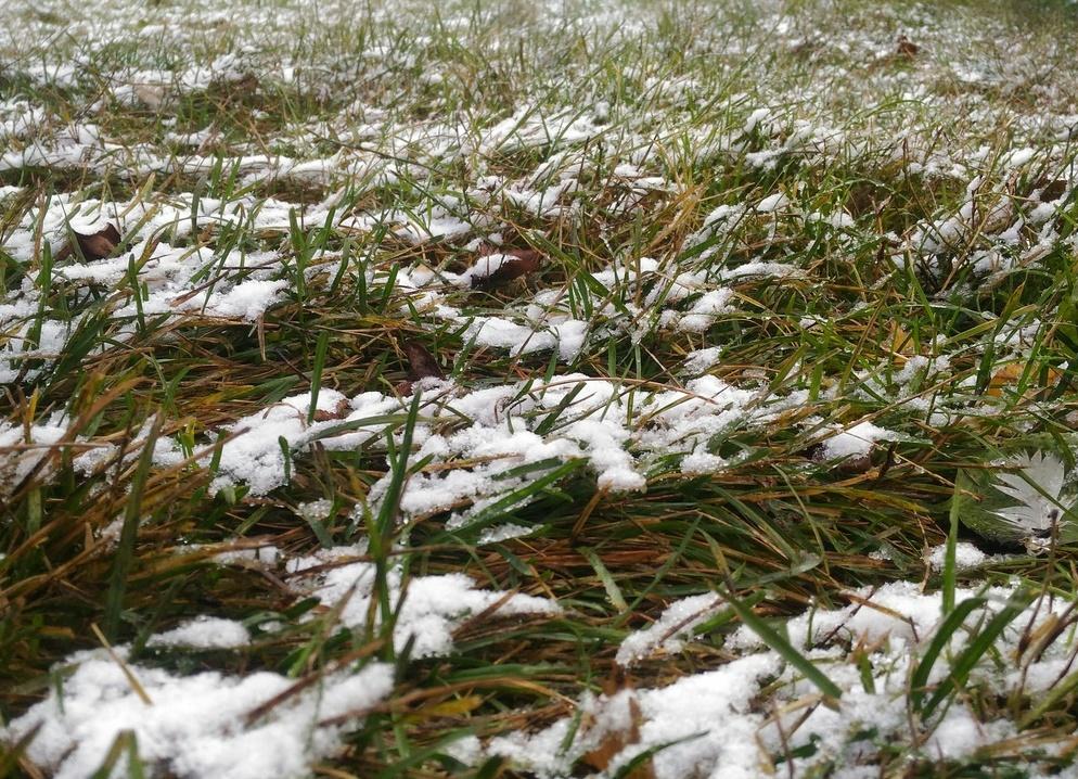 В Башкирии вновь прогнозируются заморозки