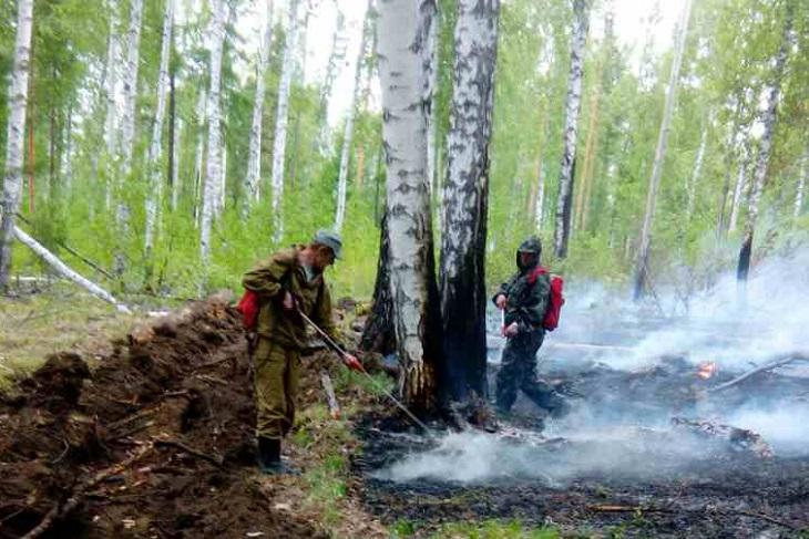 В Иркутской области за выходные дни ликвидировано четыре лесных пожара