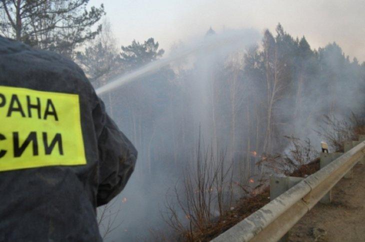 За сутки площадь лесных пожаров в Иркутской области возросла на 106 тысяч гектаров