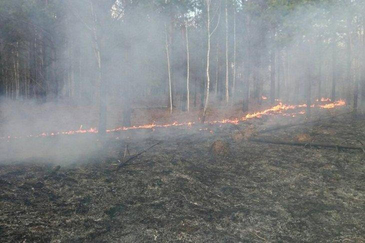 122 пожара действуют на территории Иркутской области утром 7 июля