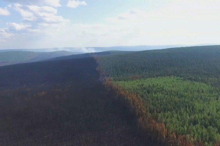 Лесному ведомству Иркутской области поручии нарастить силы для ликвидации пожаров