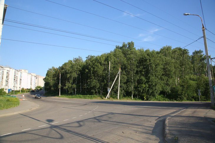 Стекачев обратится в прокуратуру из-за вырубки рядом с Университетским, Первомайским и Юбилейным