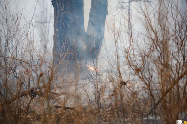 57 тысяч гектаров леса горело в Иркутской области на утро 6 июля
