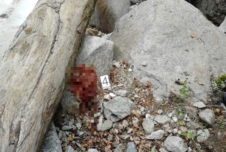 Иностранный турист сорвался со скалы в поселке Аршан в Бурятии
