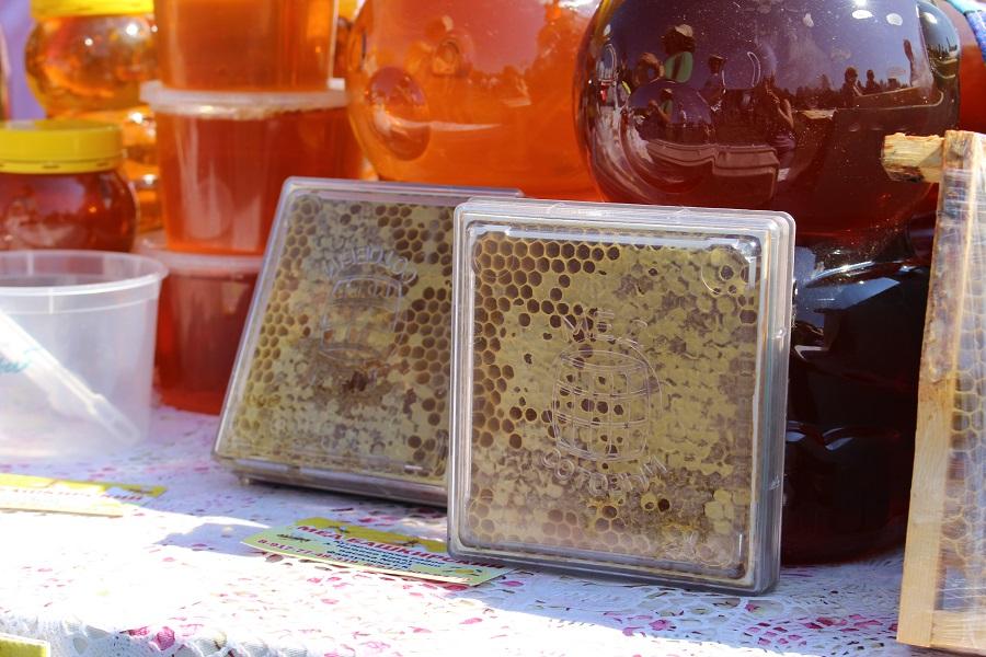Курултай Башкирии намерен разработать закон для защиты башкирских пчел от китайских пестицидов