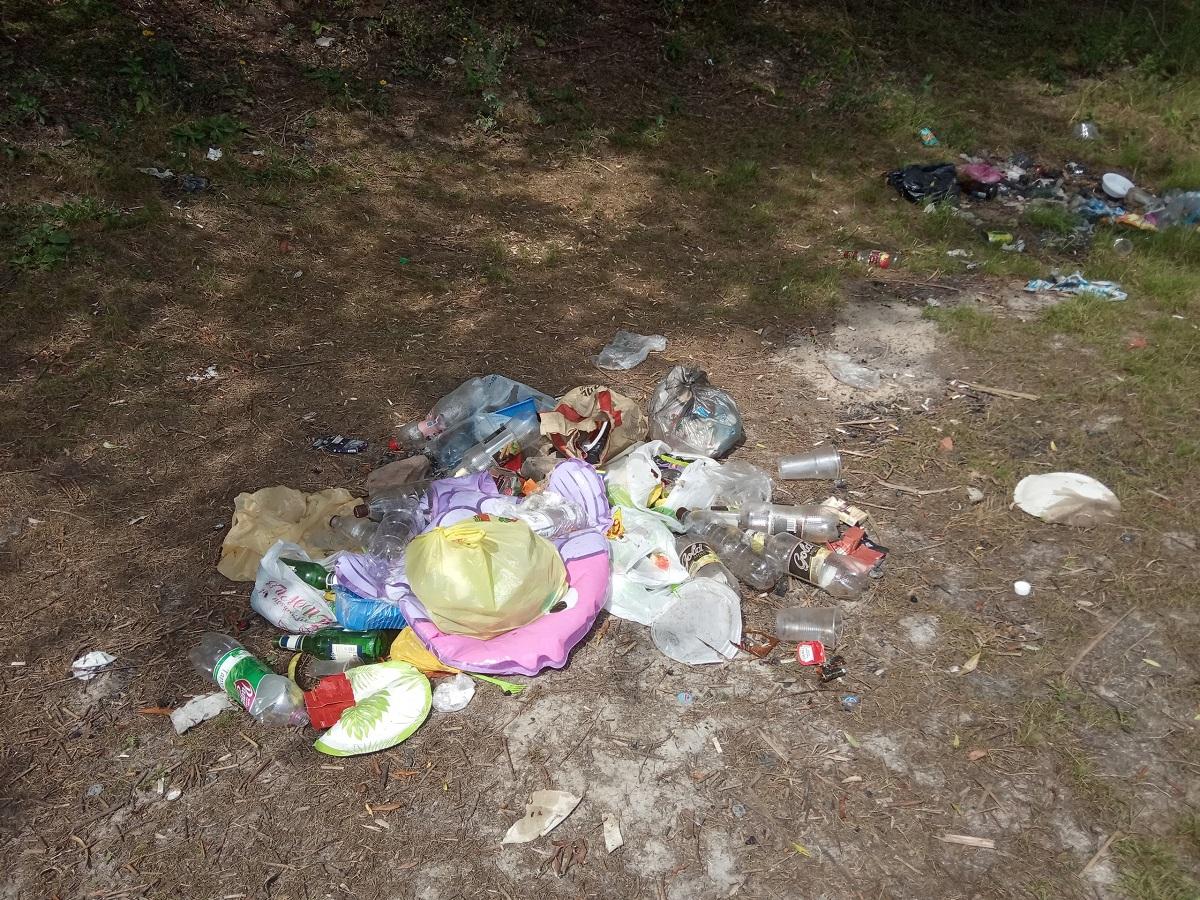 «Не прошло и недели»: В Уфе отдыхающие вновь замусорили берег озера после субботника, проведенного волонтерами