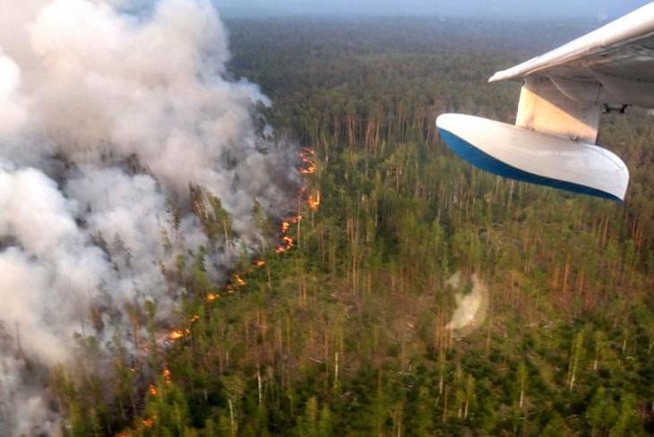 МЧС сообщило о снижении роста площадей лесных пожаров в трех регионах Сибири