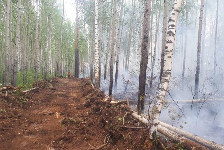 Утром 5 августа в Иркутской области продолжает гореть 700 тысяч гектаров леса