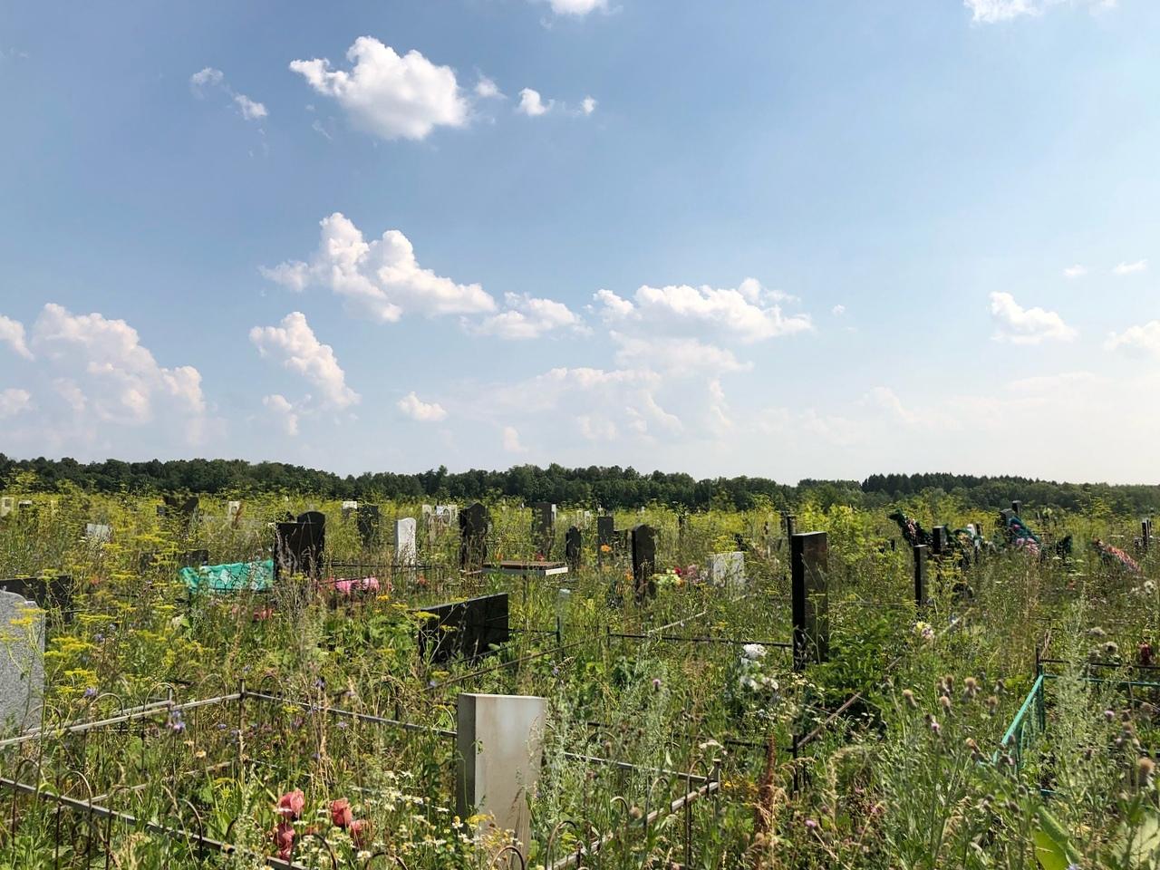 На кладбище под Уфой пытались выкопать мертвеца