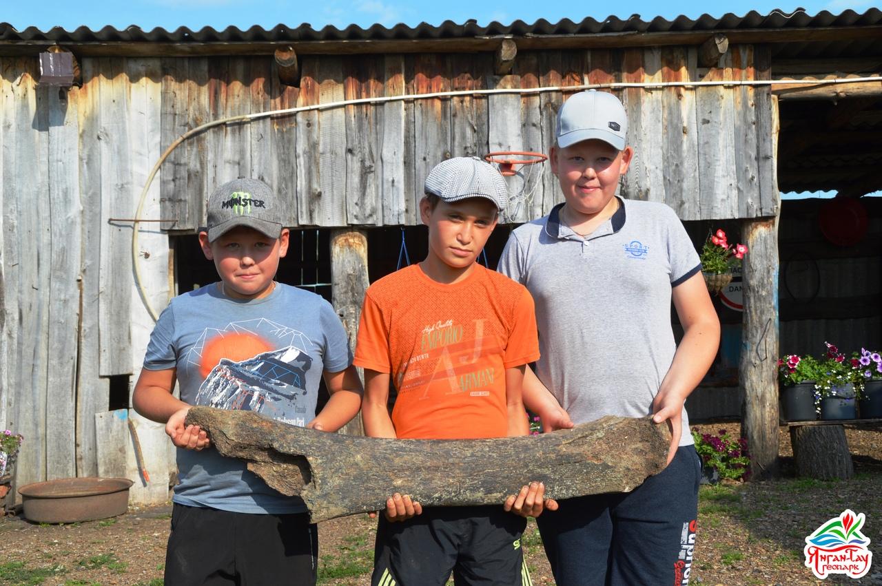 В Башкирии школьники нашли кость мамонта