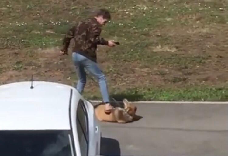 Житель Уфы, жестоко пинавший собаку на улице, записал новое видеообращение