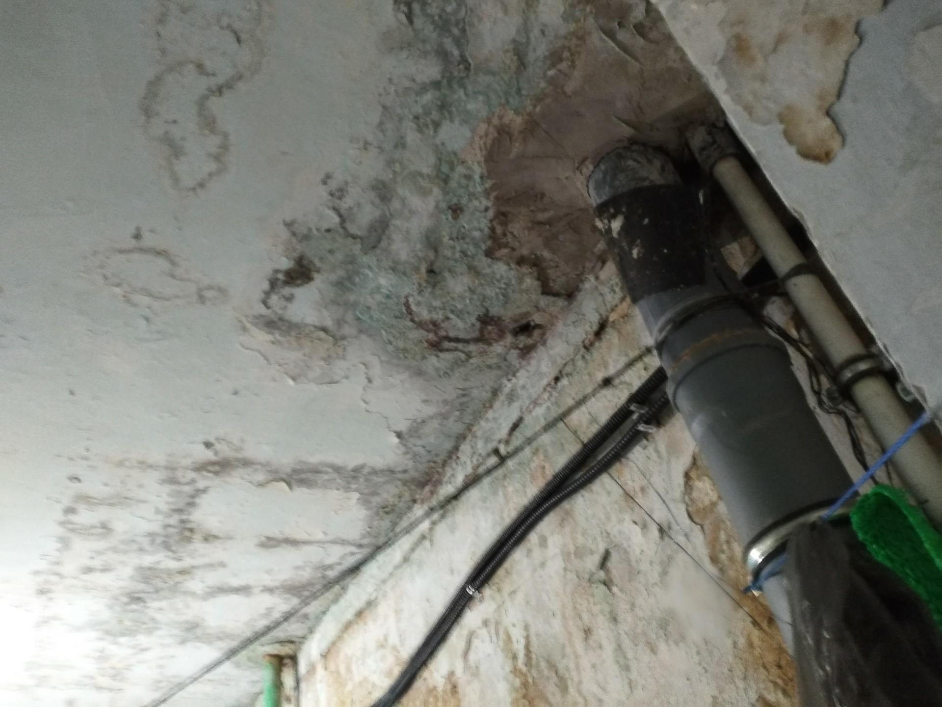 «Прорехи на кровле и протекающие трубы»: Жители Башкирии жалуются на аварийный дом