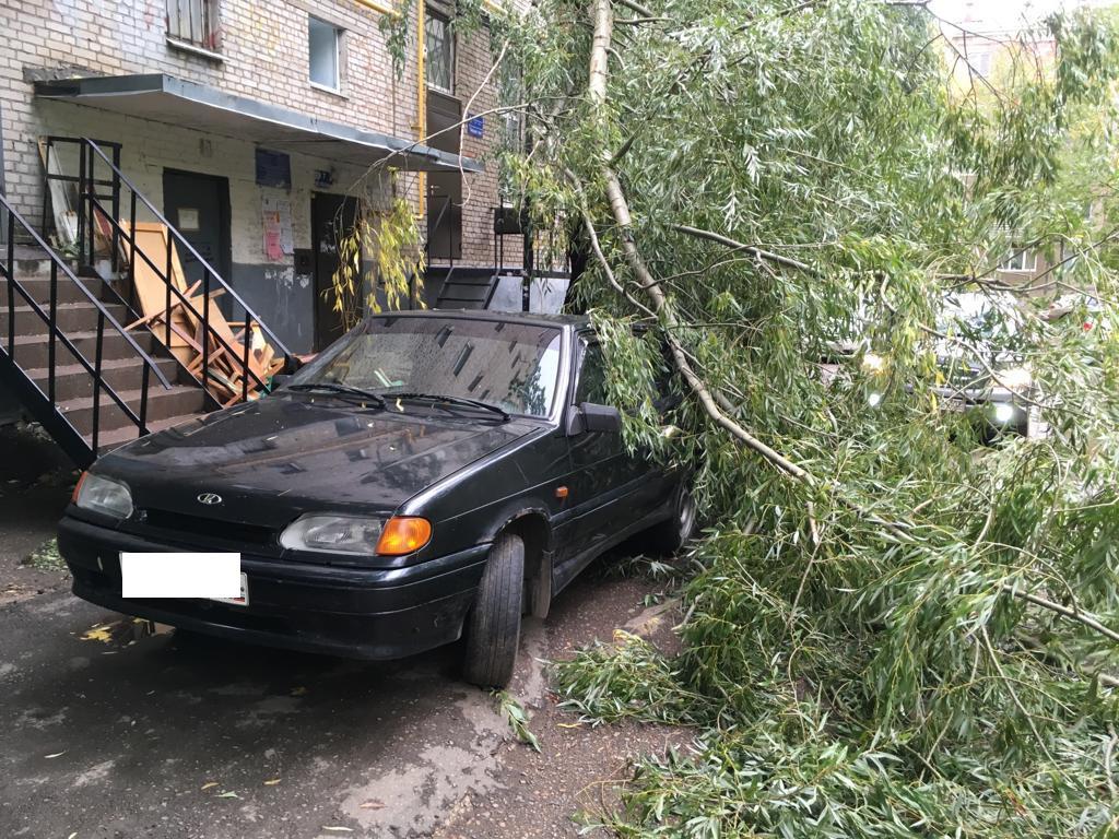 В Уфе из-за непогоды падают деревья, заборы и баннеры