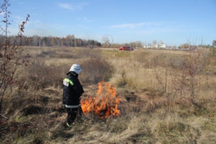 Контролируемые отжиги сухой травы проводят в Иркутске