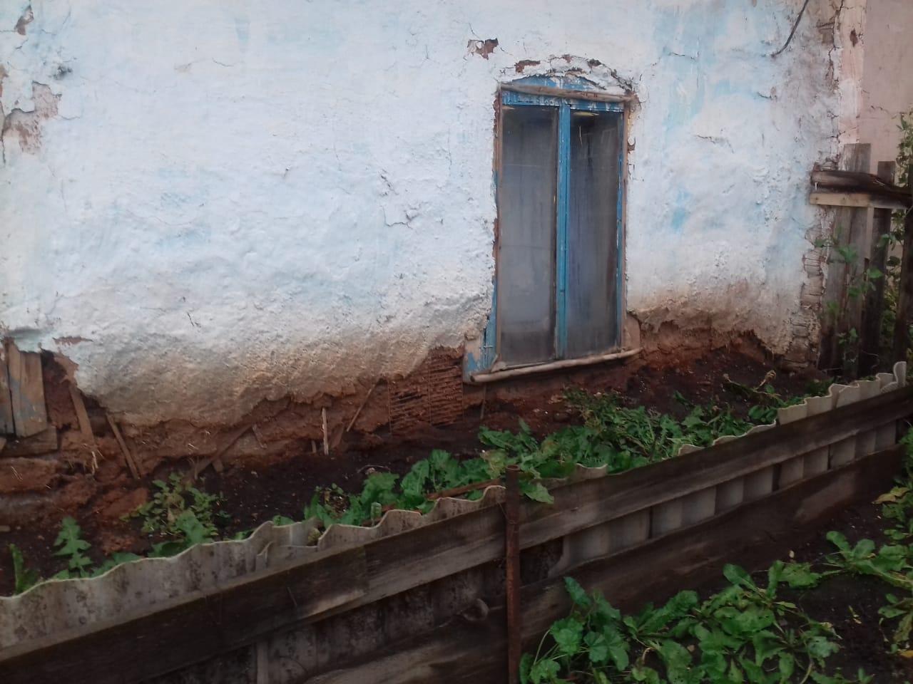 «Везде грибок, сырость и сыроежки»: Жители Уфы вынуждены жить в аварийном доме с плесенью