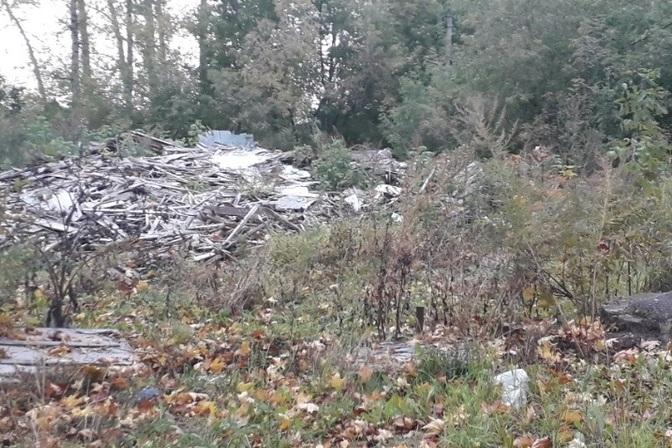 «До каких пор мы будем терпеть» – Жители уфимского микрорайона жалуются на антисанитарию и грязь рядом с их домами
