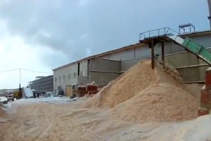 Руководство лесоперерабатывающего холдинга Иркутской области обвиняют в мошенничестве