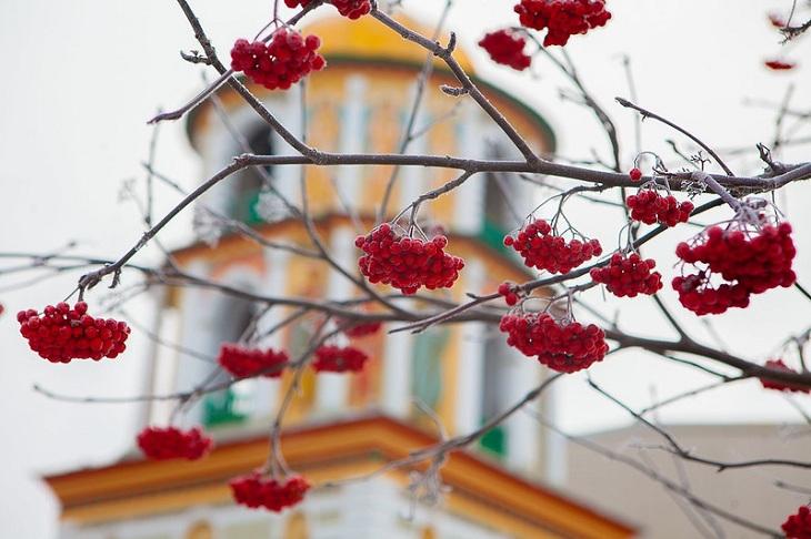 До +13 градусов ожидается в Иркутске 2ноября