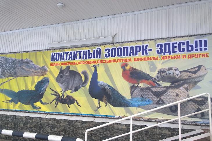Иркутская зоогалерея эвакуировала 30 животных из закрывшегося контактного зоопарка в Чунском