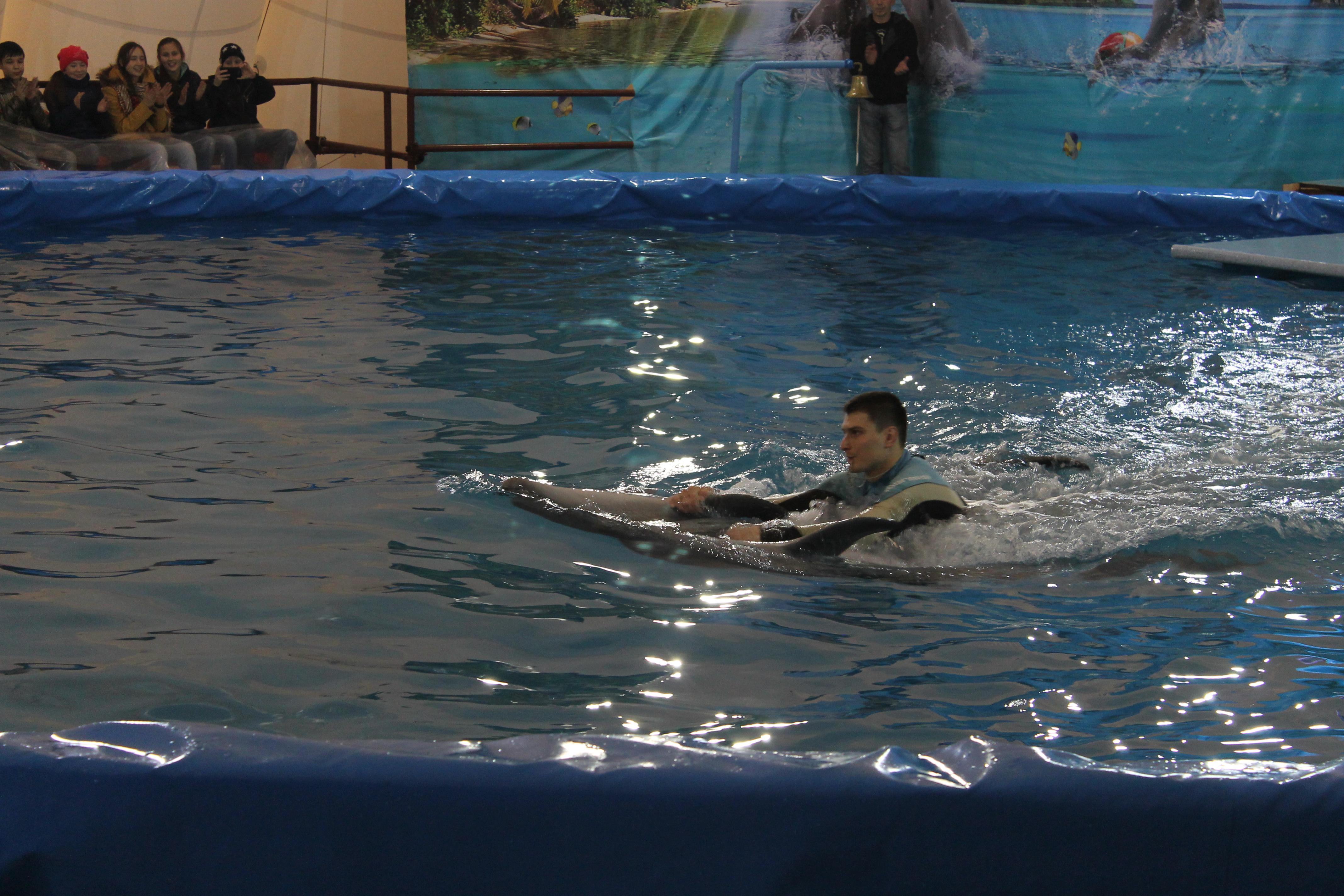 Радий Хабиров высказался по поводу скандала с дельфинарием