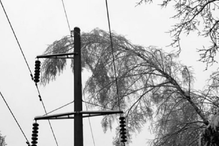Жители Иркутского района сутки остаются без света из-за снегопада