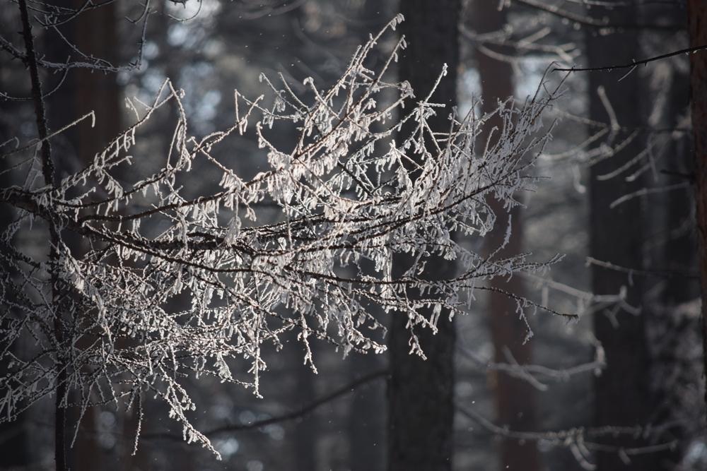 Башгидромет дал уточненный прогноз погоды на 1 ноября