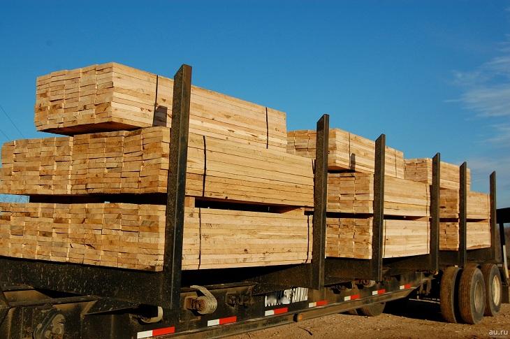 Контрабанду леса на 16 миллионов рублей экспортировали из Братского района