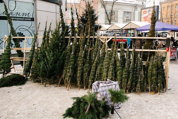 Елочные базары заработают в Иркутске с 14 декабря
