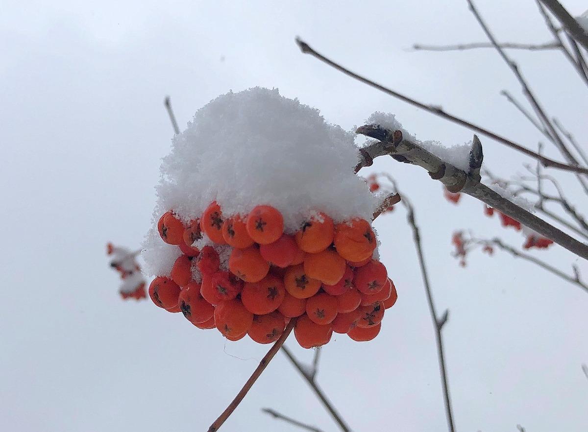 Башгидромет дал уточненный прогноз погоды на 5 декабря